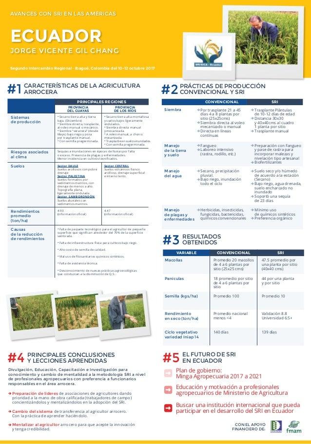 CON EL APOYO FINANCIERO DE: #3 RESULTADOS OBTENIDOS VARIABLE Macollas Panículas Semilla (kgs/ha) Rendimiento en seco (ton/...