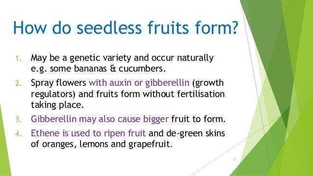 Post fertilization structures in plants.