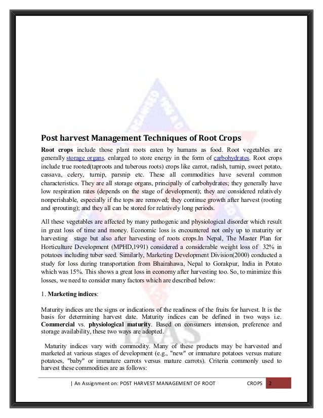 Narrative Essays Examples For High School What Is A Editorial Essay Editorial A Modest Proposal Ideas For Essays also Essay Writing For High School Students Systematisches Probieren Beispiel Essay Informative Synthesis Essay