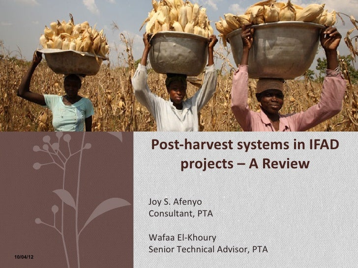 Post-harvest systems in IFAD               projects – A Review           Joy S. Afenyo           Consultant, PTA          ...