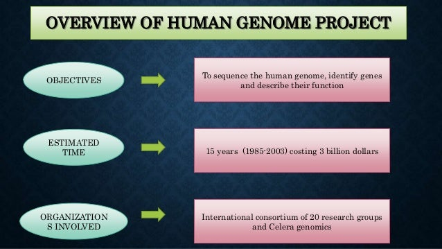 Post Human Genome Project