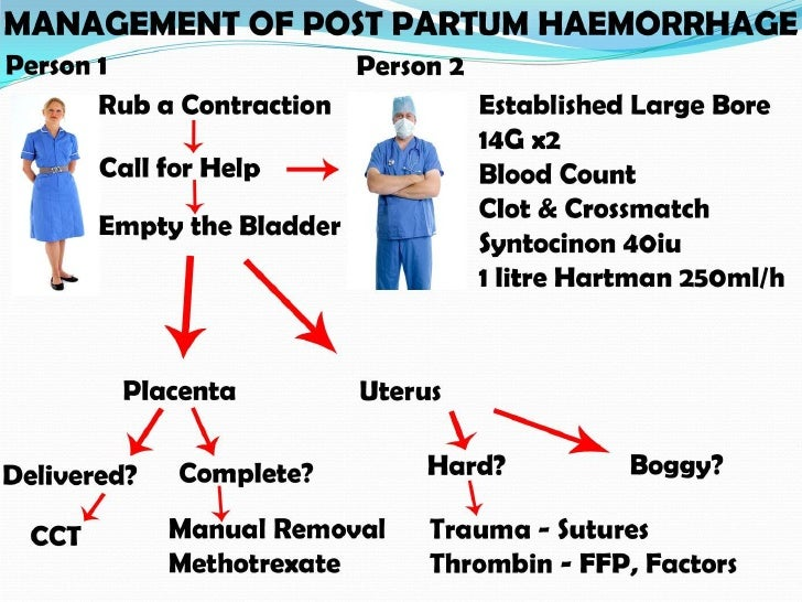 post partum haemorrhage pph If printed, this document is only valid for the day of printing postpartum haemorrhage (pph) 2015-03-24docx page 1 of 28 postpartum haemorrhage (pph) prevention and.