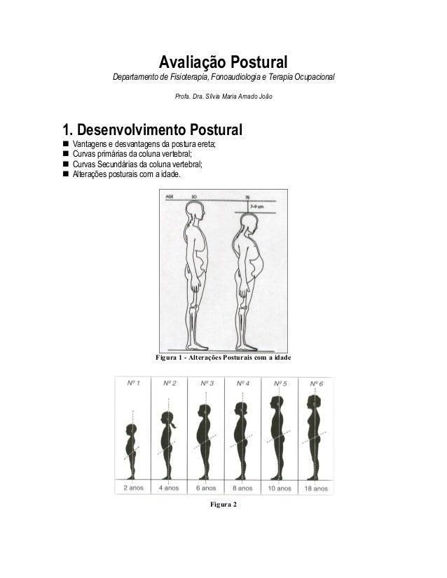 Avaliação Postural            Departamento de Fisioterapia, Fonoaudiologia e Terapia Ocupacional                          ...