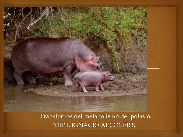 Transtornos del metabolismo del potasio MIP J. IGNACIO ALCOCER S.