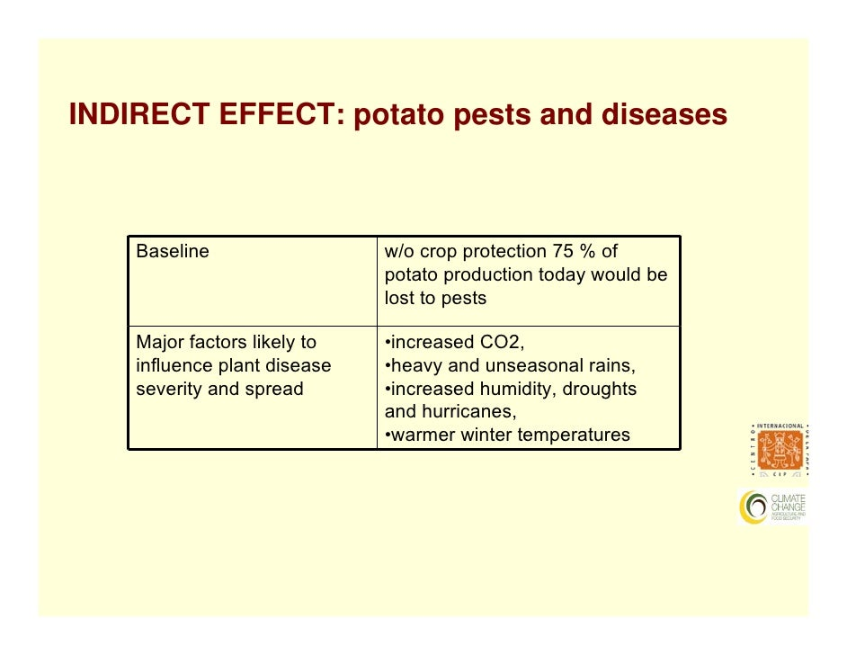 impact of potato production Of potato production due to the difficulty of measuring nitrate leaching and the contamination of an assessment of the impact of worldwide consumption.