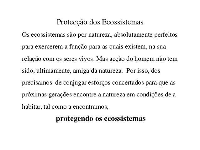 Protecção dos Ecossistemas Os ecossistemas são por natureza, absolutamente perfeitos para exercerem a função para as quais...