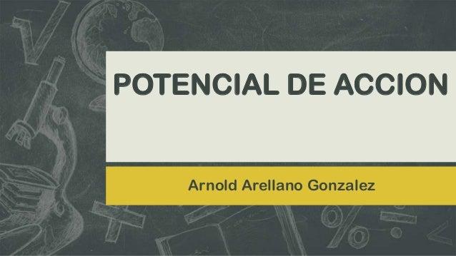 POTENCIAL DE ACCION  Arnold Arellano Gonzalez