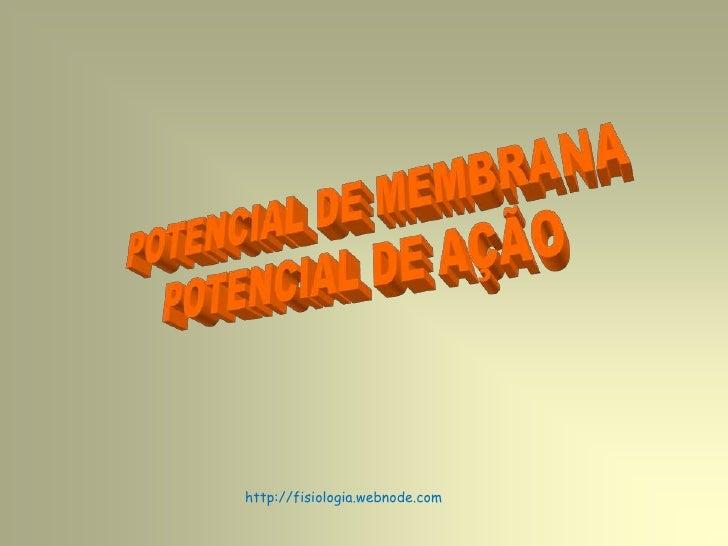 POTENCIAL DE MEMBRANA<br />POTENCIAL DE AÇÃO<br />http://fisiologia.webnode.com<br />