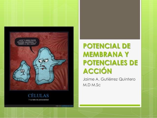 POTENCIAL DEMEMBRANA YPOTENCIALES DEACCIÓNJaime A. Gutiérrez QuinteroM.D M.Sc