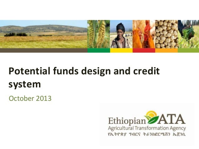 Potential funds design and credit system October 2013