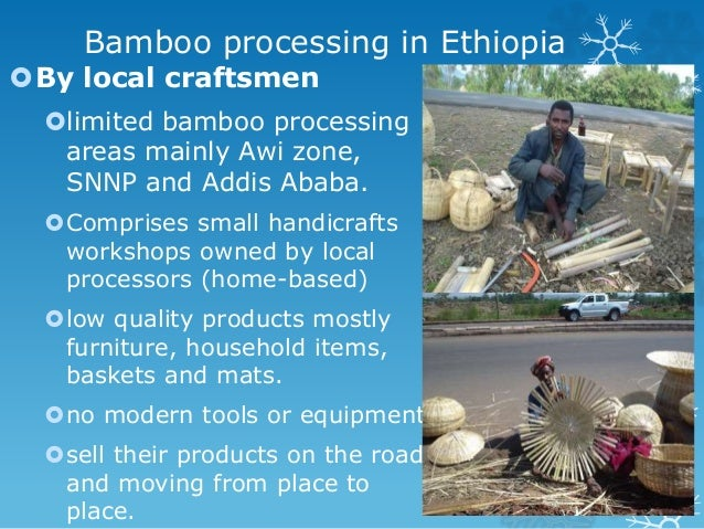 The Potential Of Bamboo In Ethiopia
