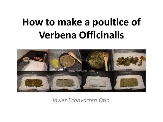 How to make a poultice of Verbena Officinalis Javier Echavarren Otín