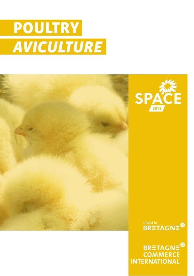 POULTRY AVICULTURE