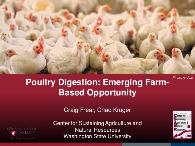 Poultry Digestion: Emerging Farm- Based Opportunity Craig Frear, Chad Kruger Center for Sustaining Agriculture and Natural...