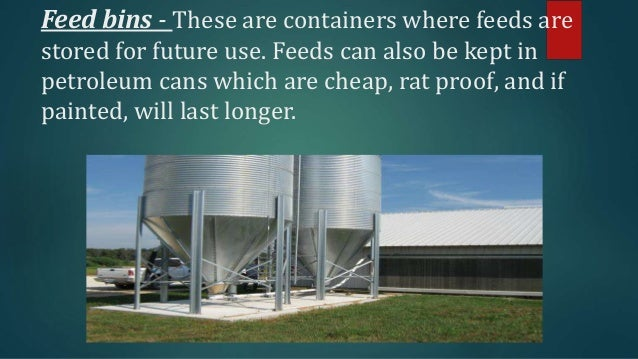 Poultry Equipment And Facilities