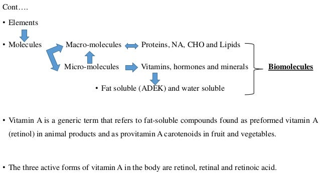 an introduction to the importance of vitamin a Wide importance of carotenoids in health and disease introduction some  75 years ago, vitamin a was discovered as a fat-soluble growth factor present in.