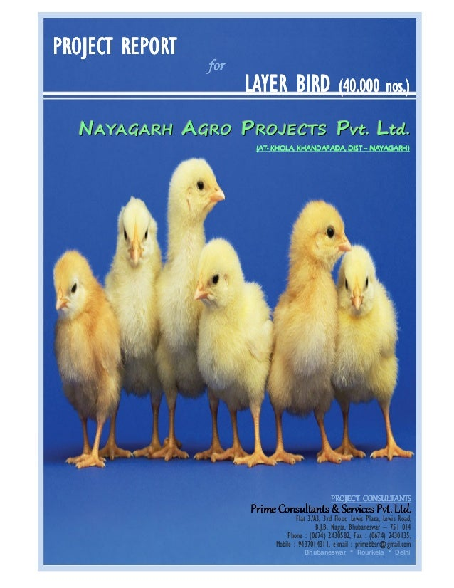 PROJECT REPORT  for  LAYER BIRD  nos.) (40,000 nos.)  NAYAGARH AGRO PROJECT S Pvt . Lt d. (ATNAYAGARH) (AT- KHOLA, KHANDAP...