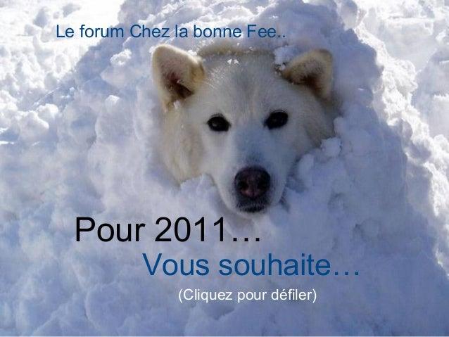 Pour 2011… Vous souhaite… (Cliquez pour défiler) Le forum Chez la bonne Fee..