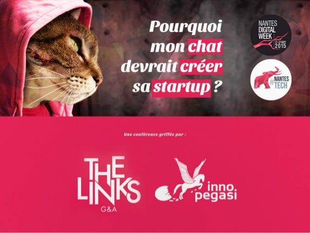 Pourquoi mon chat devrait créer sa startup ? The Links & Inno Pegasi