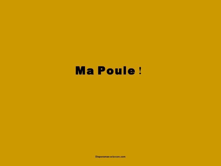 Ma Poule !                     Diaporamas-a-la-con.com