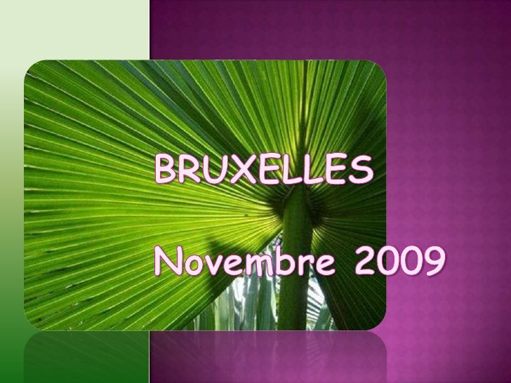 BRUXELLES<br />Novembre 2009<br />