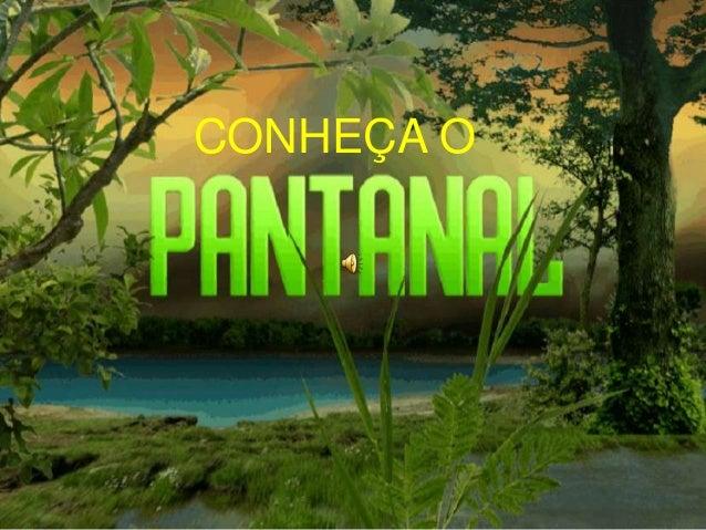 CONHEÇA O