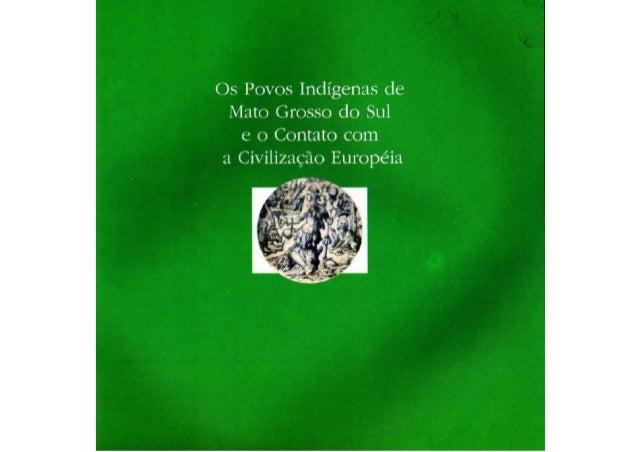 Povos indígenas de ms