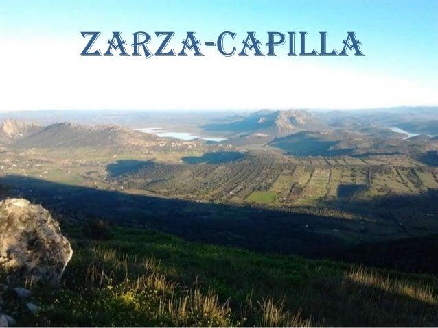 ZARZA-CAPILLA