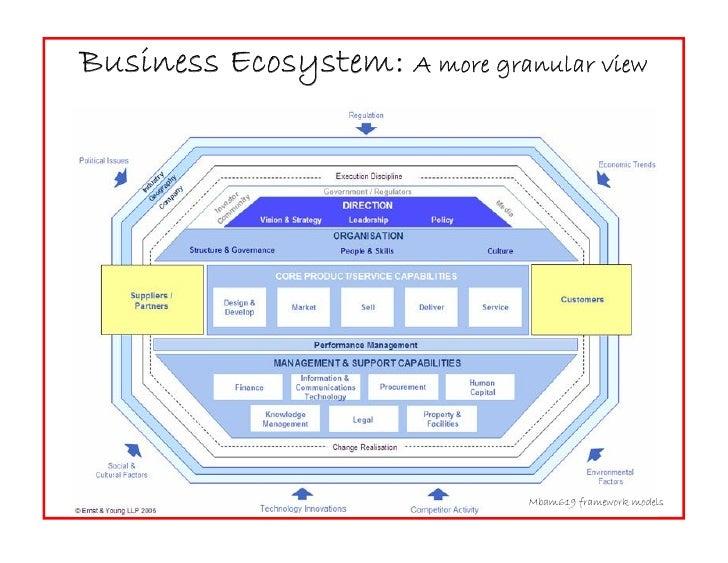 Business Ecosystem: A more granular view                                    Mbam619 framework models
