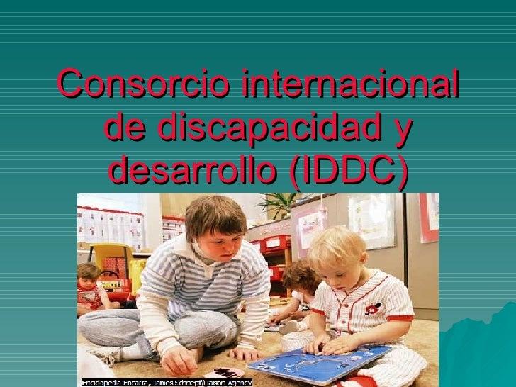 Consorcio internacional de discapacidad y desarrollo (IDDC)