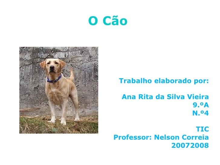 O Cão   <ul><ul><li>Trabalho elaborado por: </li></ul></ul><ul><ul><li>Ana Rita da Silva Vieira </li></ul></ul><ul><ul><li...