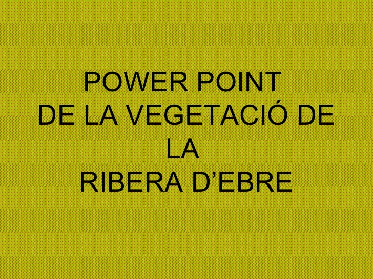 POWER POINT  DE LA VEGETACIÓ DE LA  RIBERA D'EBRE