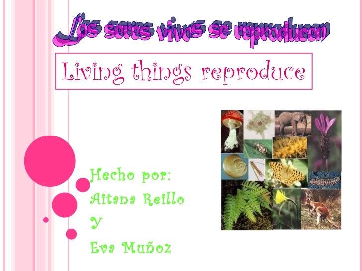 Hecho por: Aitana Reillo Y  Eva Muñoz Los seres vivos se reproducen