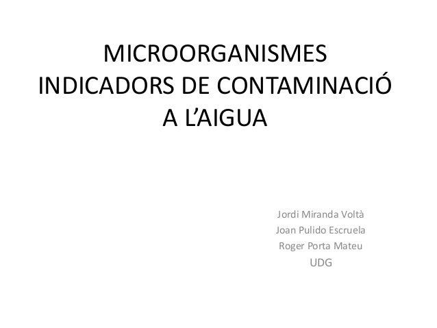 MICROORGANISMES INDICADORS DE CONTAMINACIÓ A L'AIGUA  Jordi Miranda Voltà Joan Pulido Escruela Roger Porta Mateu  UDG