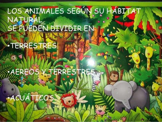 Power animales Slide 3