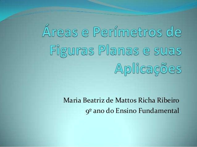 Maria Beatriz de Mattos Richa Ribeiro 9º ano do Ensino Fundamental