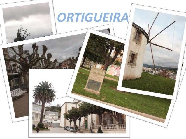 ORTIGUEIRA