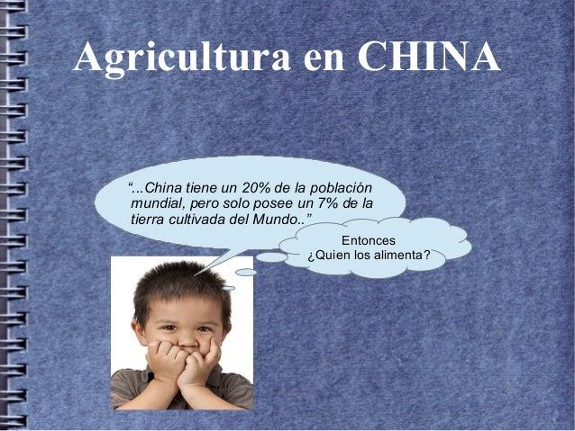 China Y El Cultivo En Terrazas