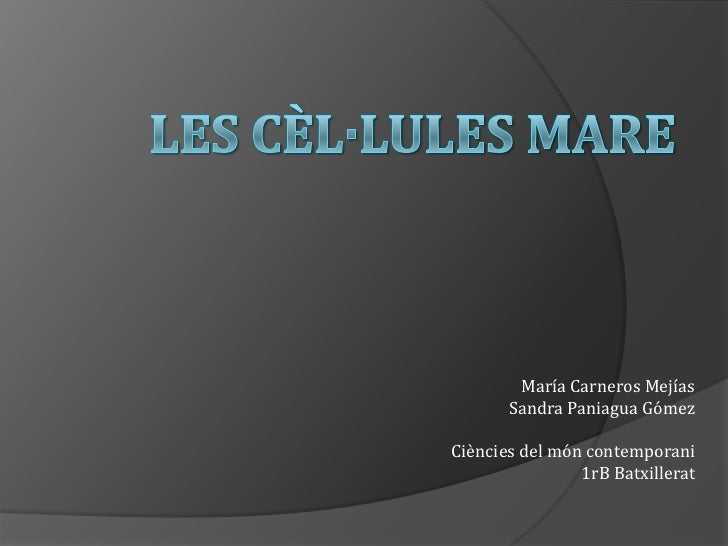 Les cèL·lules mare<br />María Carneros Mejías<br />Sandra Paniagua Gómez<br />Ciències del món contemporani<br />1rB Batxi...