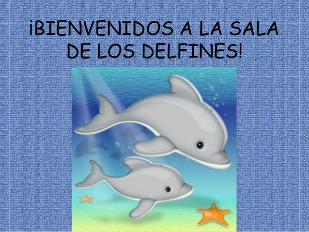 ¡BIENVENIDOS A LA SALA DE LOS DELFINES!