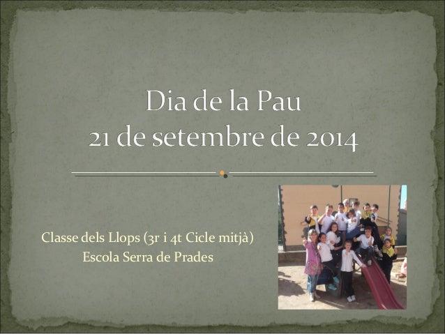 Classe dels Llops (3r i 4t Cicle mitjà)  Escola Serra de Prades