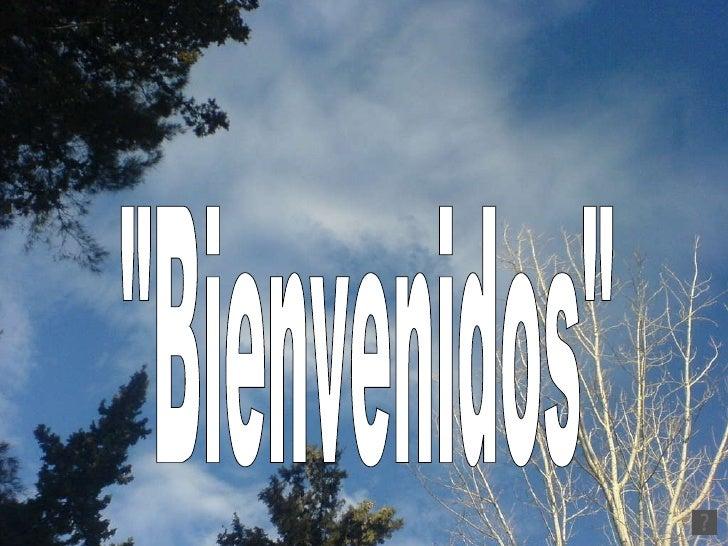 """""""Bienvenidos"""""""