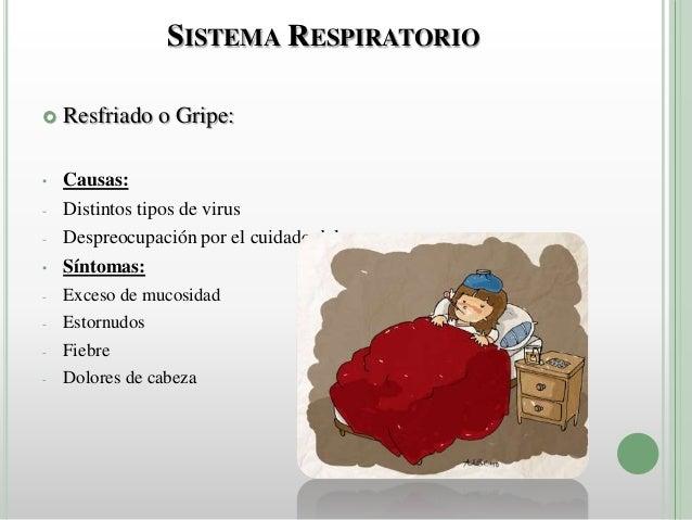 Higiene Del Sistema Respiratorio: Enfermedades Sistemas Del Cuerpo Humano