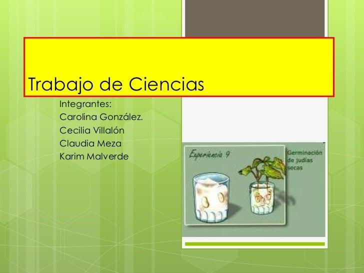 Trabajo de Ciencias   Integrantes:   Carolina González.   Cecilia Villalón   Claudia Meza   Karim Malverde