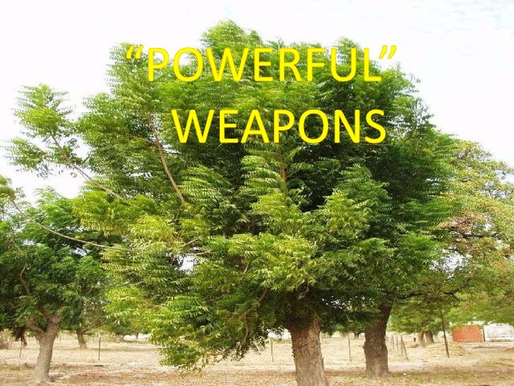 Powerful  Weapons
