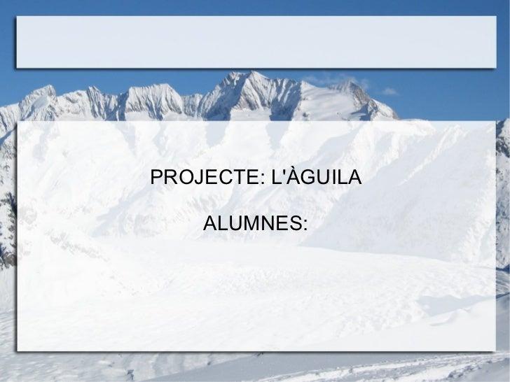 PROJECTE: L'ÀGUILA ALUMNES: