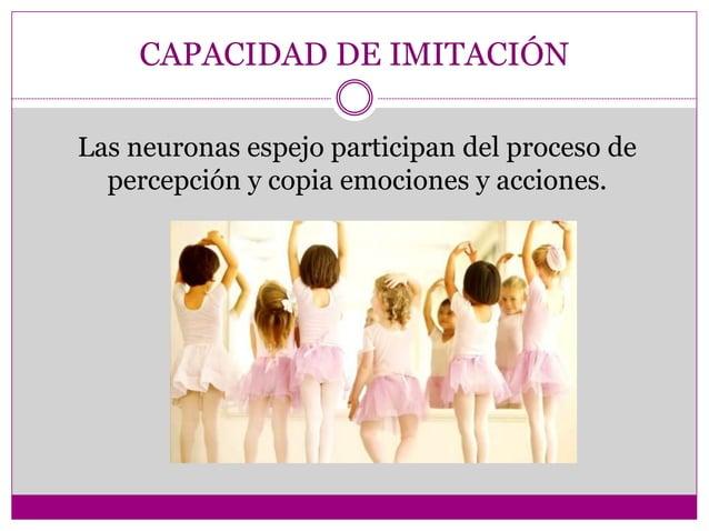 CAPACIDAD DE IMITACIÓN Las neuronas espejo participan del proceso de percepción y copia emociones y acciones.