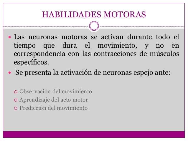 HABILIDADES MOTORAS  Las neuronas motoras se activan durante todo el tiempo que dura el movimiento, y no en correspondenc...