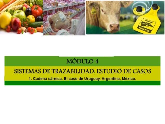 Carne. Bovina Uruguay: EL sistema es obligatorio, y comprende toda la ganadería bovina del país y sus categorias Iincorpor...