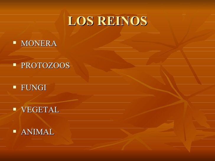 LOS REINOS <ul><li>MONERA </li></ul><ul><li>PROTOZOOS </li></ul><ul><li>FUNGI </li></ul><ul><li>VEGETAL </li></ul><ul><li>...